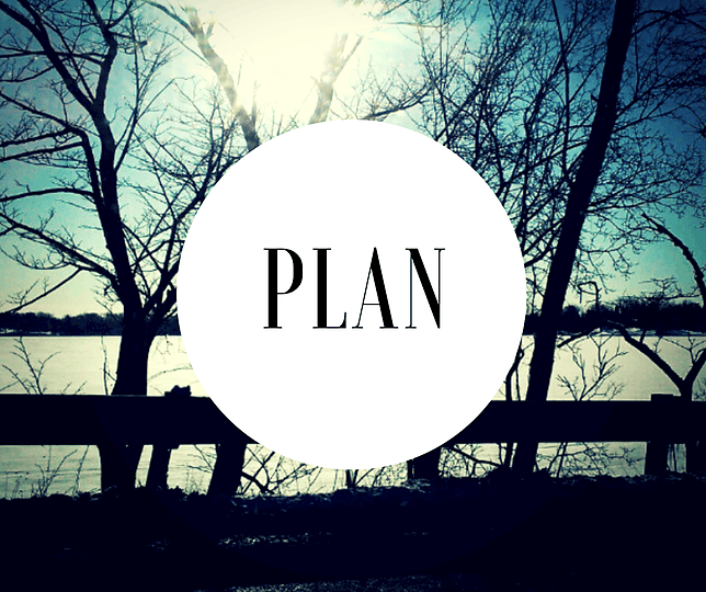 plan for the best